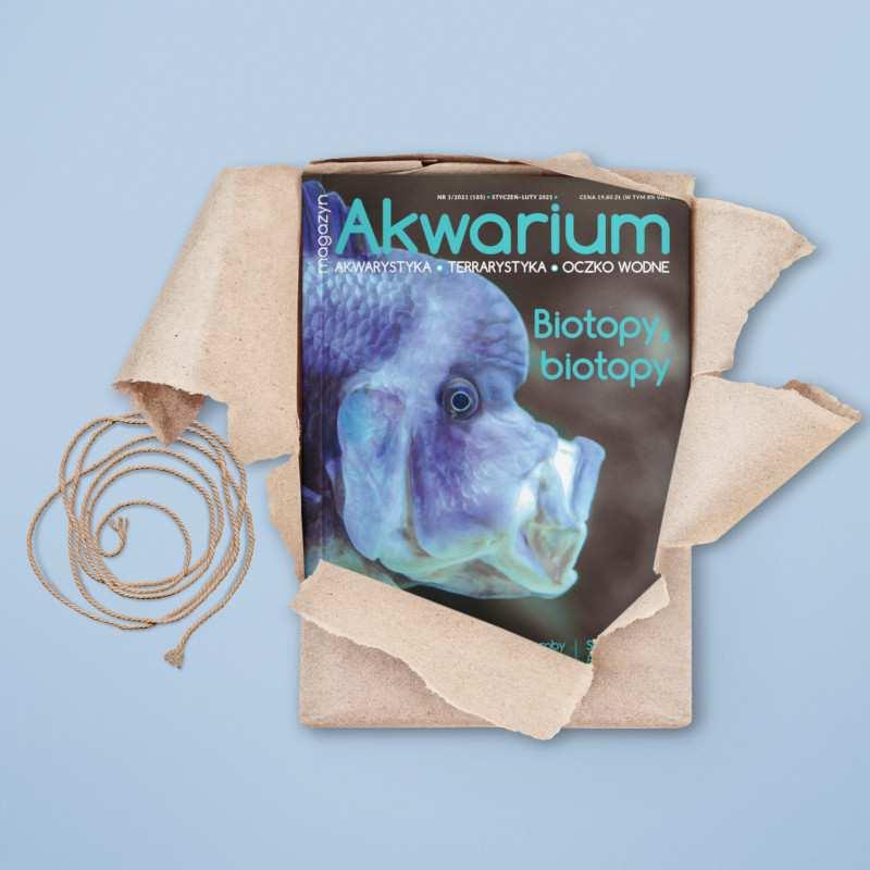 Magazyn Akwarium nr 1/2021
